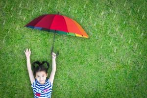chinnapong / Shutterstock.com