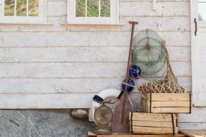 bluedog studio / Shutterstock.com