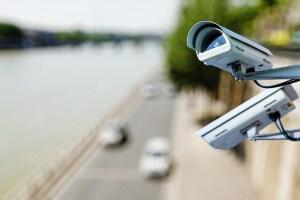 pixinoo / Shutterstock.com