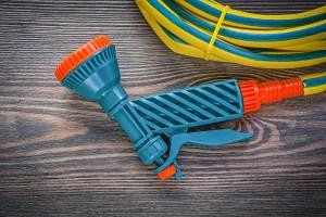 mihalec / Shutterstock.com