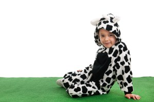 Boy dressed as cow