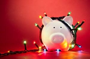 pogonici / Shutterstock.com
