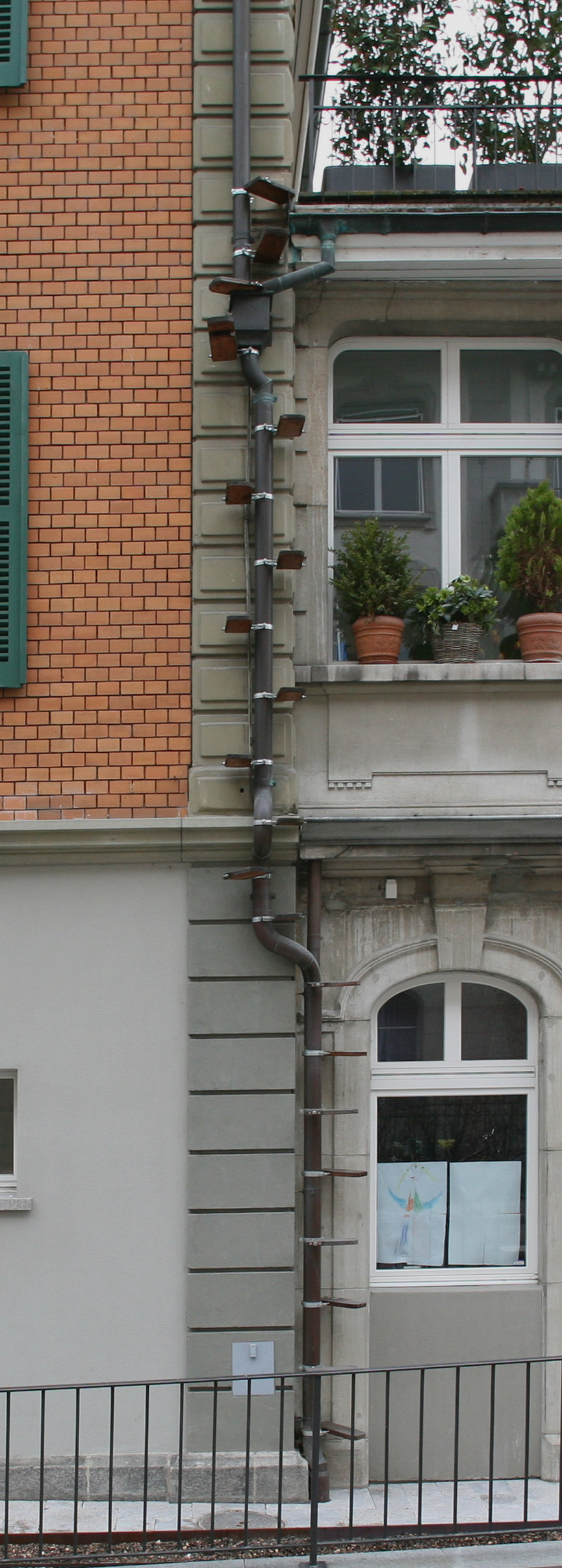 Pet Doors For People Who Live On Upper Floors This City Allows You To Install Diy Cat Ladders Core77
