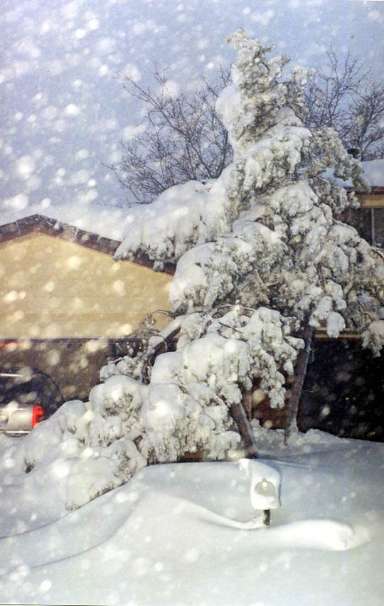Amount Of Snow Totals For October In Denver May Hit An All