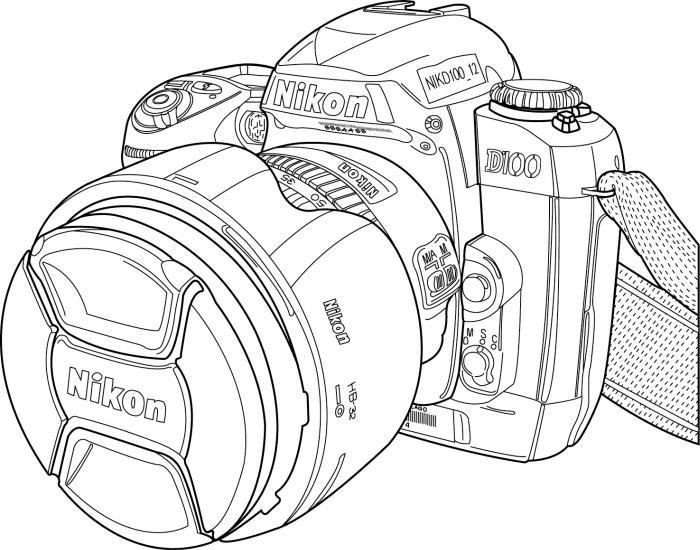Illustrator Line Drawings by Kelsey Phelps at Coroflot.com