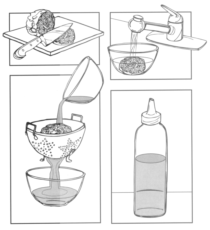Science Instruction Manual illustrations by patricia