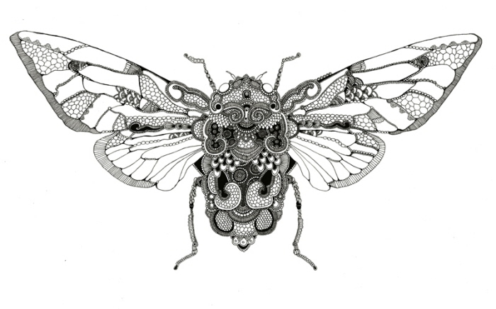 Insects by Rosalind Monks at Coroflot.com
