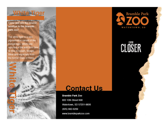 Zoo Brochure Design By Carolyn Cino At Coroflot Com