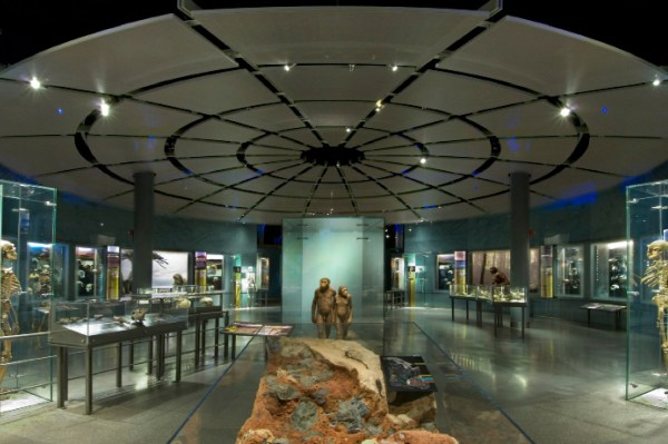 American Museum Of Natural History Ii Hartmut Jordan