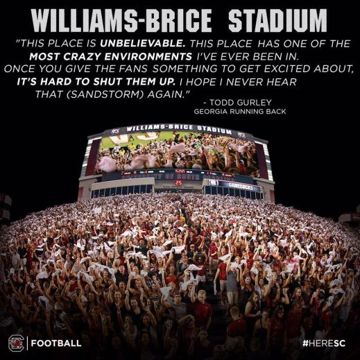 Image result for todd gurley williams brice