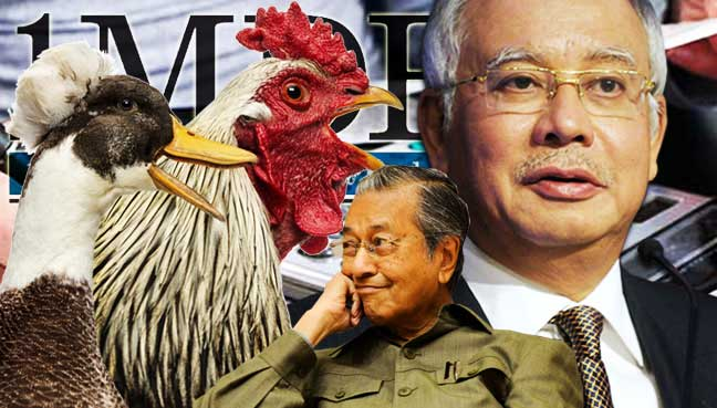 Image result for Najib Razak the chicken man
