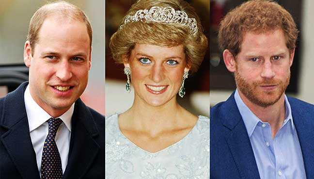 Image result for William, Harry lead tributes to mother Diana, 20 years on
