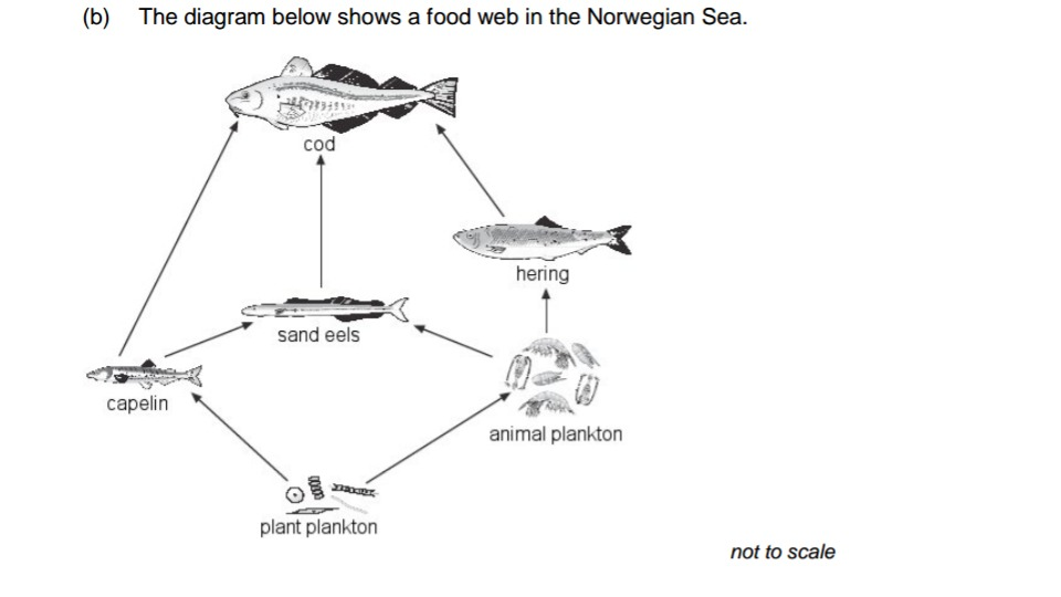 (i) How Could A Decrease In The Number Of Herring Cause A