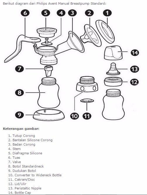 Jual Beli DISKON Alat pompa ASI Philips Avent Manual