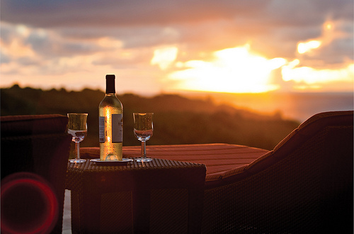 Image result for love and wine