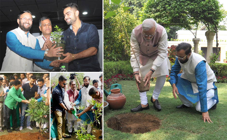 Image result for world environment day celebration in india