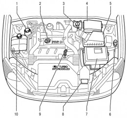 Wiring Diagram: 31 2001 Ford Focus Engine Diagram