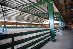 Horse Riding Arena