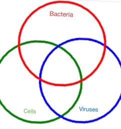 venn diagram cells vs viruses vs bacteria  [ 1280 x 1245 Pixel ]