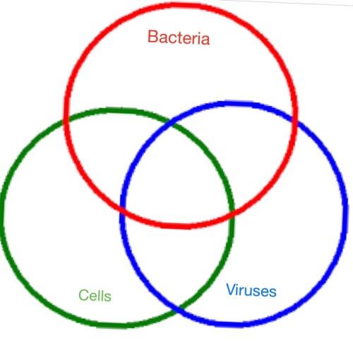 small resolution of venn diagram cells vs viruses vs bacteria