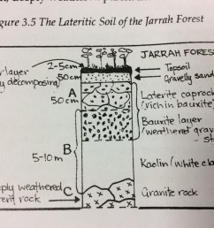 this diagram shows the variety of soils that can be found in the jarrah forest  [ 1280 x 956 Pixel ]