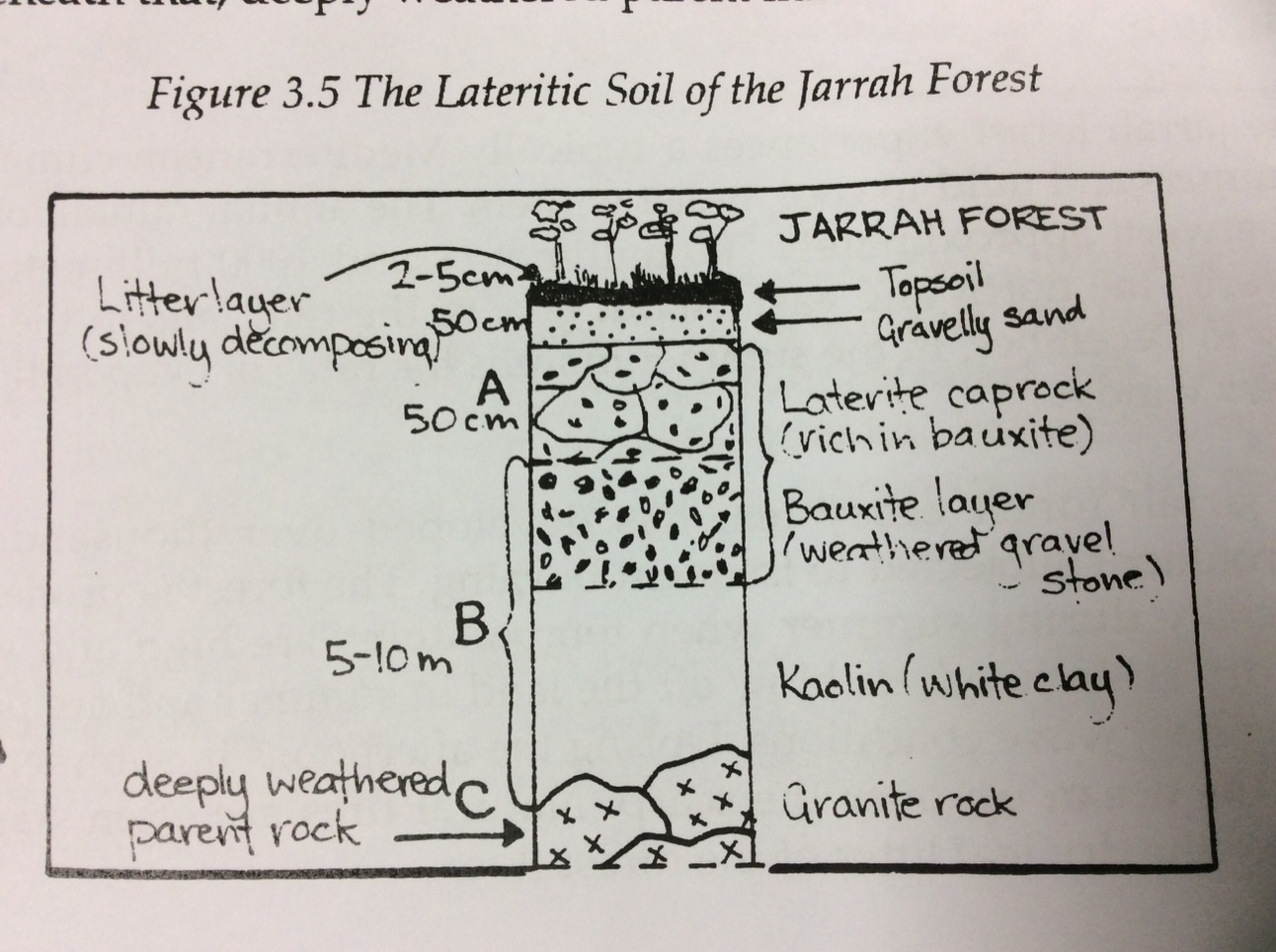 hight resolution of this diagram shows the variety of soils that can be found in the jarrah forest