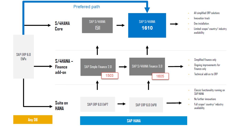 S/4HANA Migration Paths