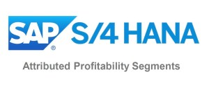 Attributed Profitability Segment Header