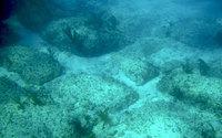 Затонувшая Атлантида: куда ведет каменная дорога у берегов Багамских островов' data-image='' data-src='http://s1.travelask.ru/system/images/files/001/068/643/wysiwyg/20ae5aec539a1ef881e12e1e34030113.jpg?1523458823
