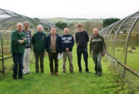 Meeting of chough and reintrduction specialists at Paradise Park, home of Operation Chough.