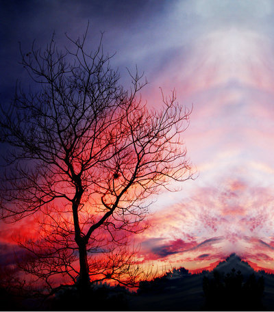 Awesome Beautiful Blue Clouds Image 540193 On