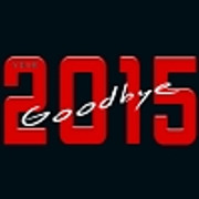 GOODBYE Year 2015 !