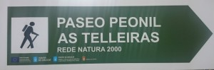cartel paseo as telleiras