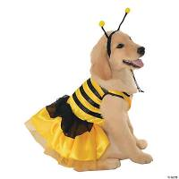 Baby Bumblebee Dog Costume