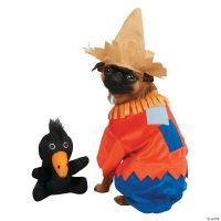 Scarecrow Extra Large Dog Costume, Pet Costumes, Halloween ...