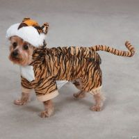 Tiger Dog Costume - Oriental Trading - Discontinued