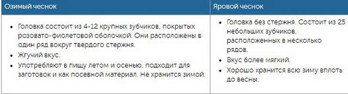 Príklad správy pre dátumové údaje stránky