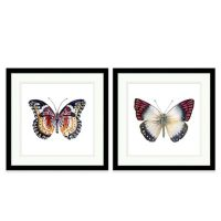 Butterfly Extra-Large Framed Wall Art - Bed Bath & Beyond
