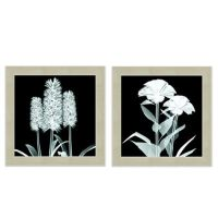 X-Ray Flower Wall Art - Bed Bath & Beyond