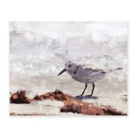 Sandpiper Painting Wall Art Collection - Bed Bath & Beyond
