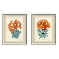 Framed Giclee Teal and Orange Seaweed Wall Art - Bed Bath ...