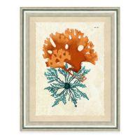 Framed Giclee Teal and Orange Seaweed Print III Wall Art ...