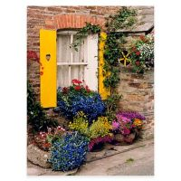 Polperro All Weather Outdoor Canvas Wall Art - Bed Bath ...