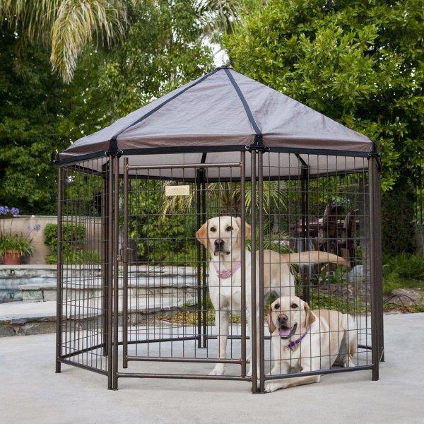 Outdoor Pet Gazebo Modular Dog Kennel