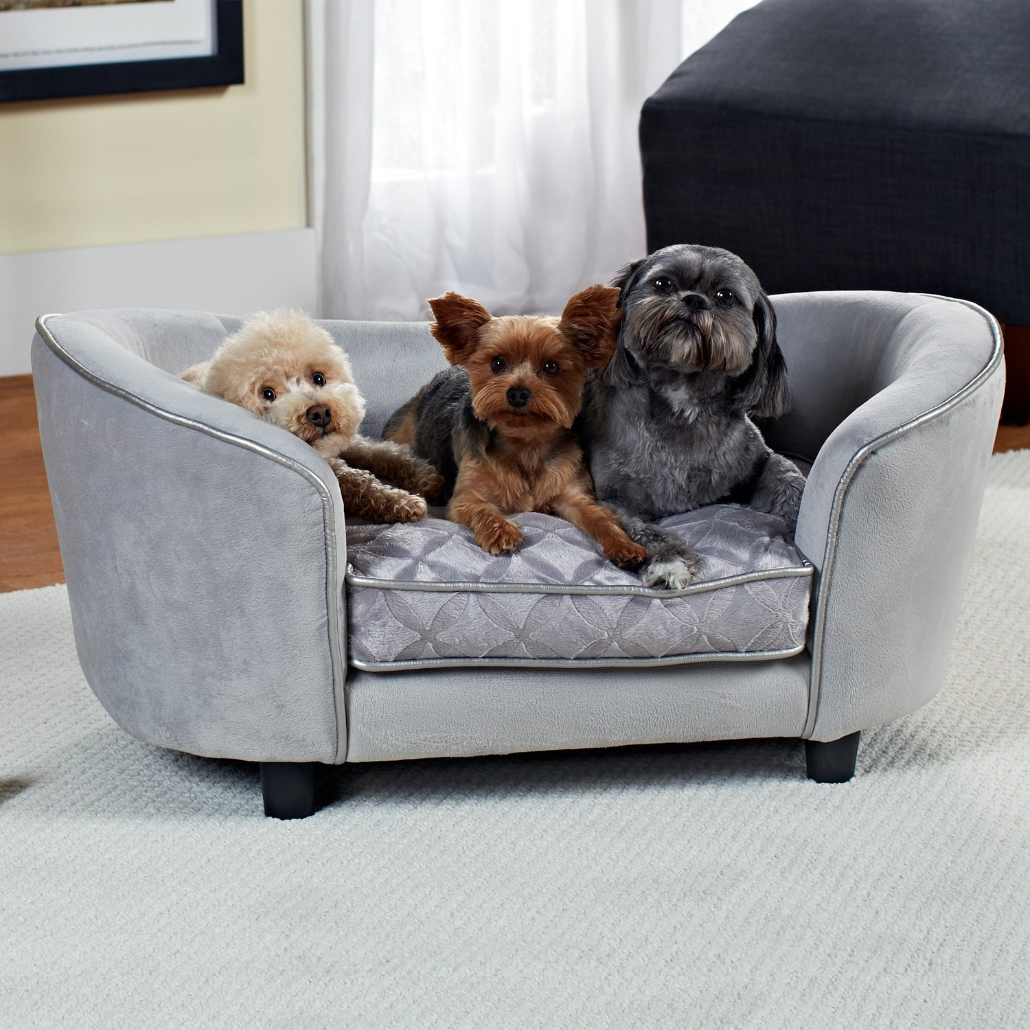 fleas in sofa no pets huffman koos sofas enchanted home pet quicksilver dog bed gray petco