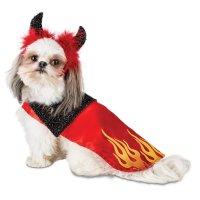 Halloween Dog Costumes - Pawsome Doggie