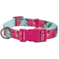Good2Go Hibiscus Dog Collar | Petco