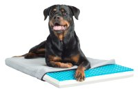 Pet Therapeutics TheraCool Gel Cell Cooling Pad with ...