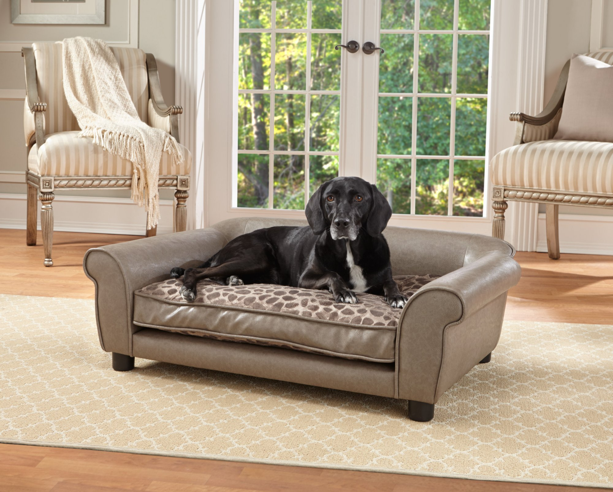 can dog fleas live in sofas sectional sofa under 500 dollars enchanted home pet pewter rockwell petco