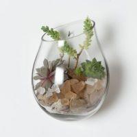 Floating Wall Terrarium | Terrain